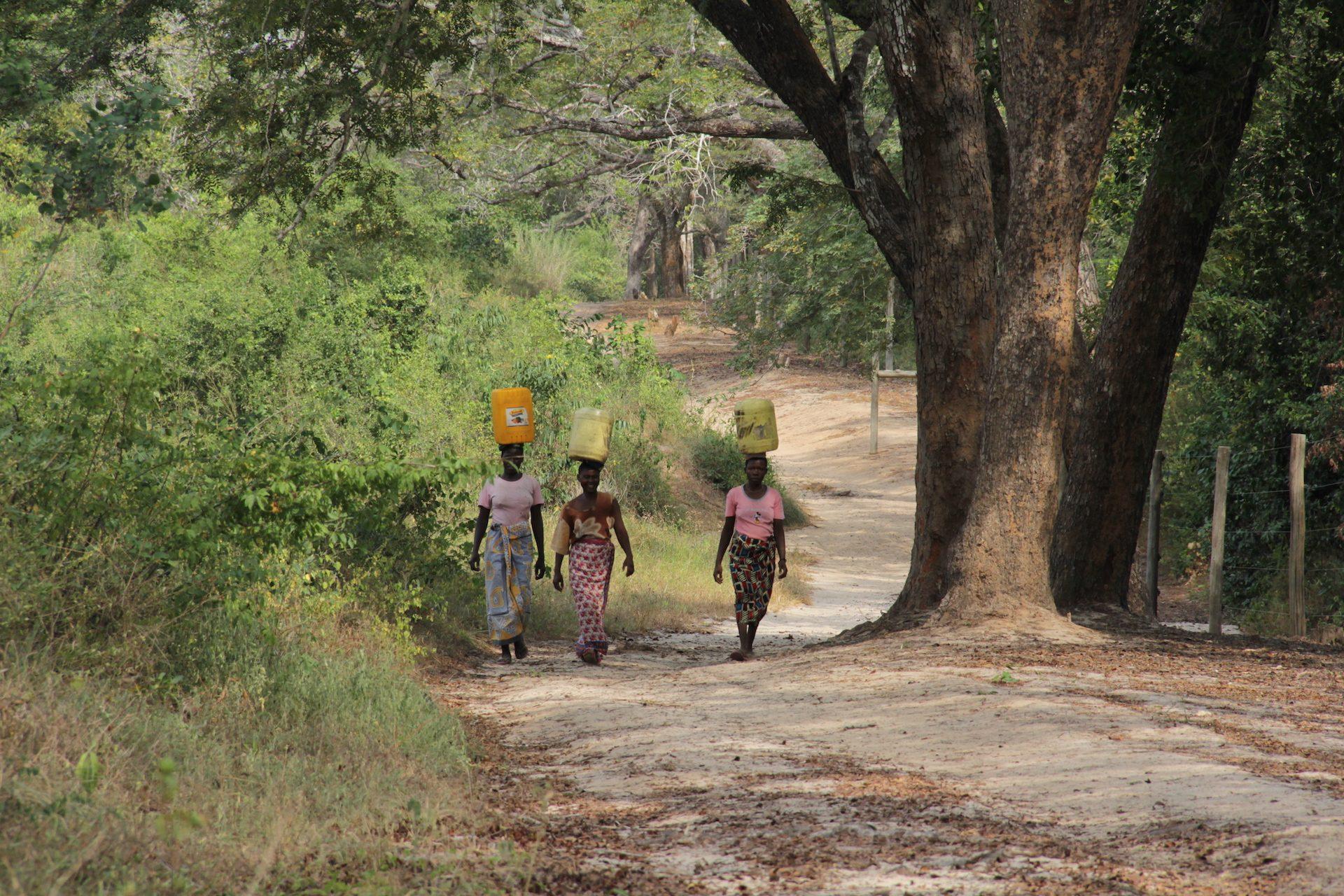 Vrouwen lopen met jerrycan op hoofd in Afrika