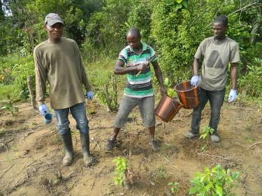 Foto projects Liberia 2015.0093 (1)