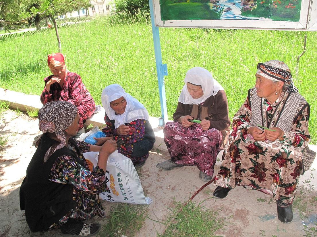 Projectresultaat Kirgizie p20140091 (3)