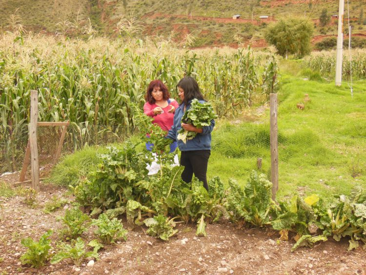 9- land en tuinbouw