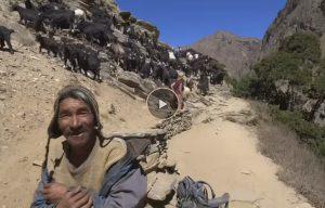 videostill-nepal-nieuw