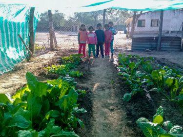 Vijf kinderen staan bij een overdekte moestuin in Argentinië.