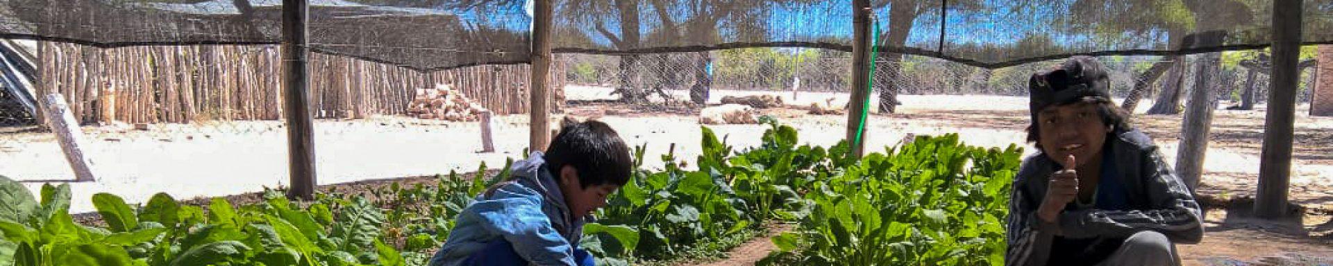 Twee kinderen werken in de moestuin in Argentinië.