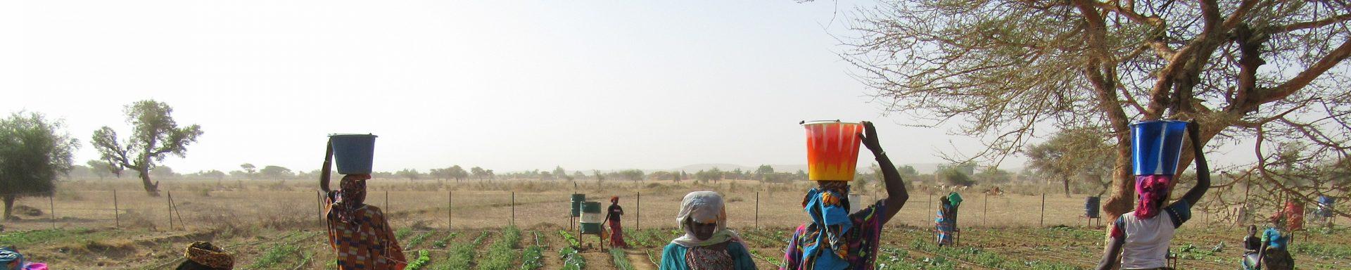 Vrouwen uit Burkina Faso halen water uit waterbron.