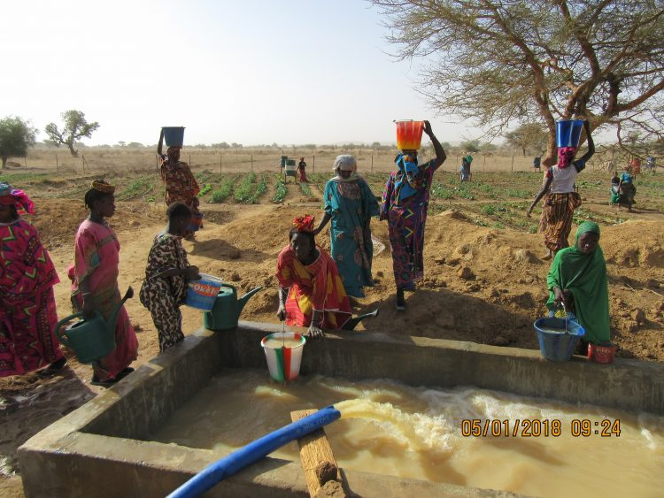 Irrigatie groentetuin Burkina Faso