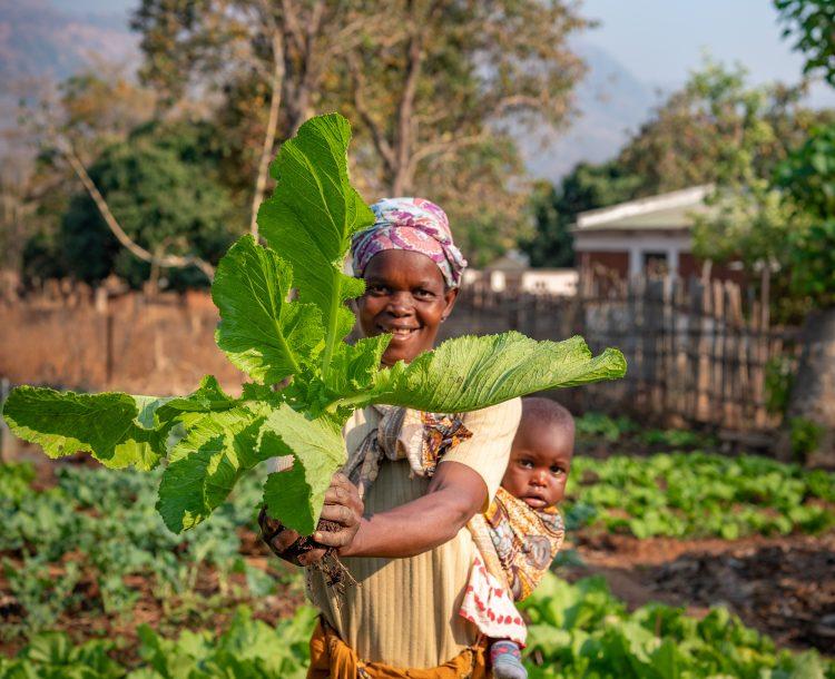 Een vrouw en een kind met een maisplant.